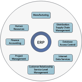 ERP Staffing Recommendations